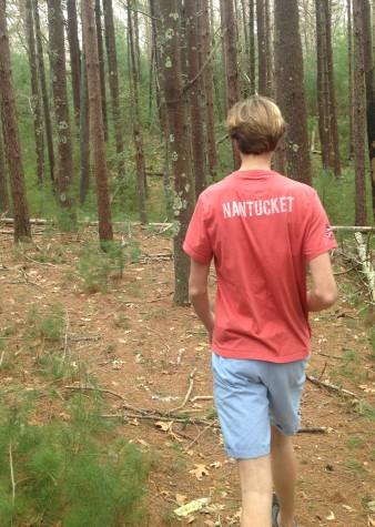 Versus: A Walk On The Wild Side