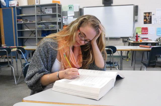 In this photo illustration, Staff Writer Zoe Calianos studies hard for the SATs. There is recent debate as to whether students are being tested too much.