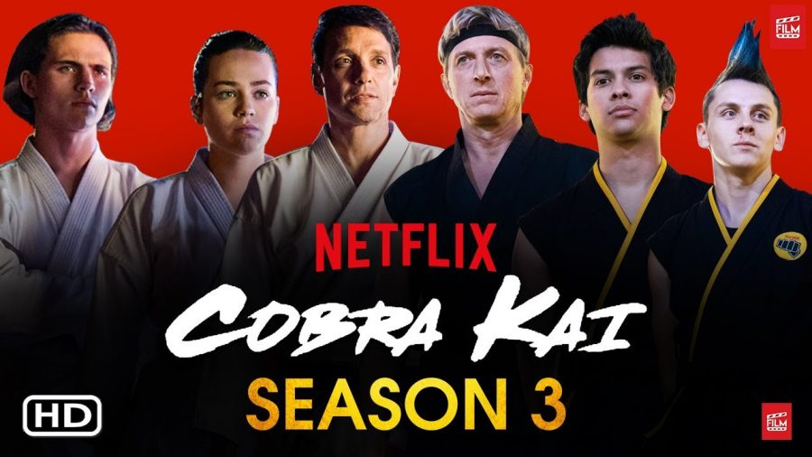 Netflix Buys Cobra Kai and  Makes Season Three