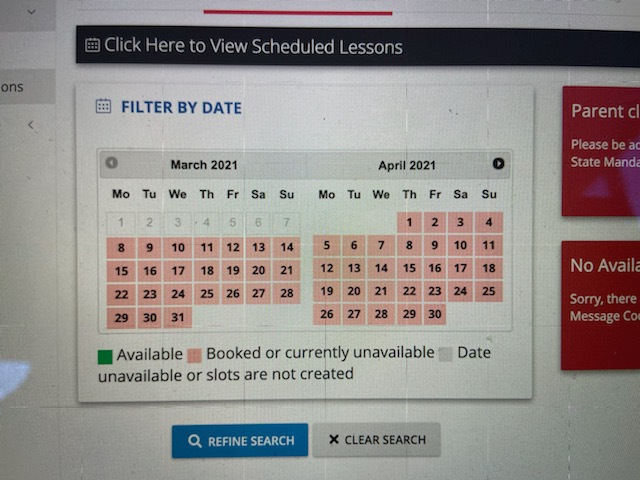 Calender on Professionals website displays overwhelmingly amounts of booked appointments.