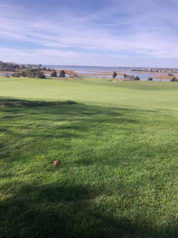 A rare quiet golf course